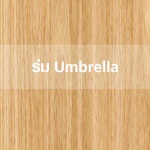 ร่ม Umbrella